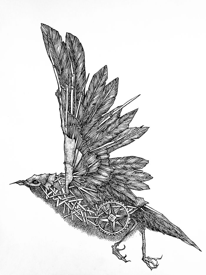 My Mechanical Birds Drawn With Ink