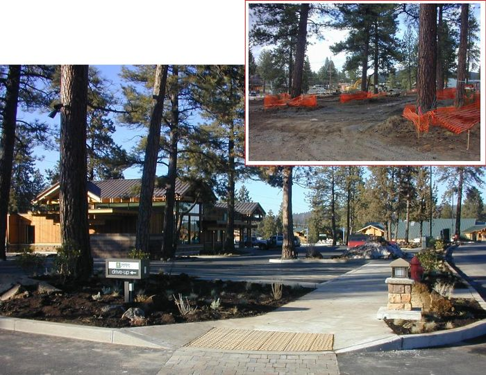 Century Park Shopping Center Bend, Oregon By Kjd Architecture Pc. Over 100 Trees Saved On Site.