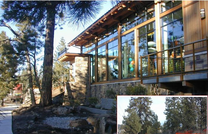 Umpqua Bank Century Park Bend, Oregon By Kjd Architecture Pc. Over 100 Trees Saved On Site.