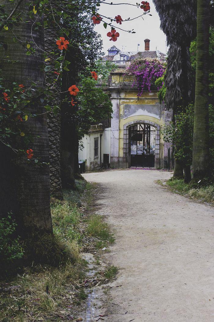 Jardim Botânico, Lisbon