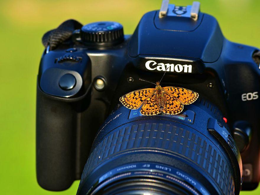 Nikon Reclame (!!!)