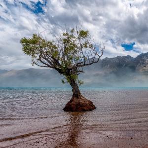 New Zealand's South Island Is Heaven On Earth