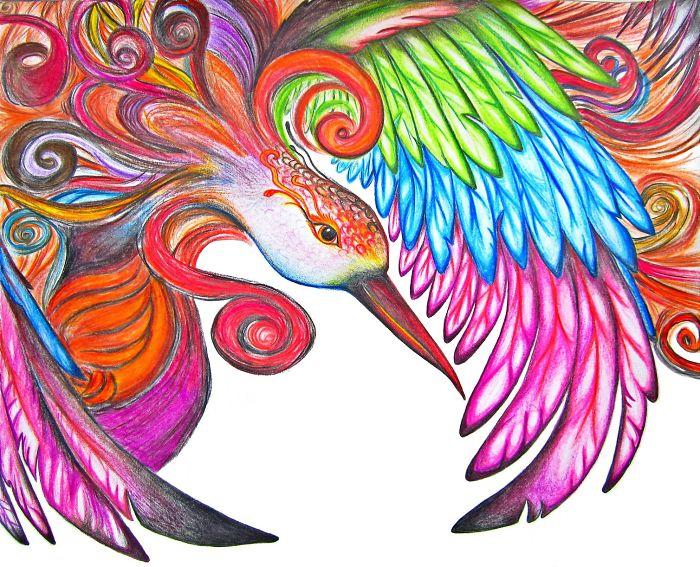 A Colorful Phoenix Drawing By Sarang Khanna