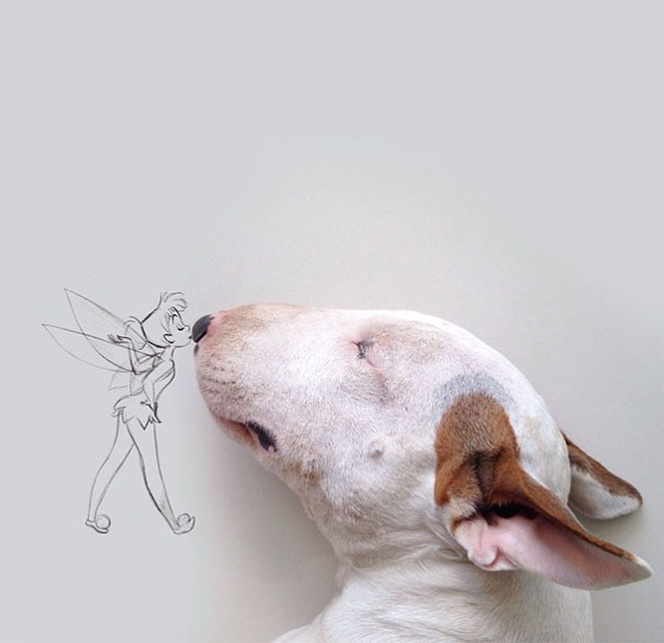My Wife Left Me With Nothing But A Dog, So I Started This Fun Photo Series