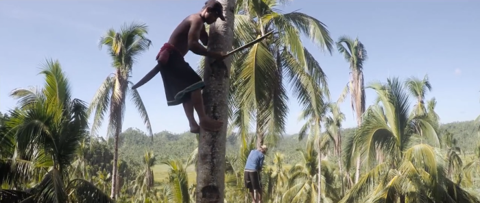 Kinabuhi: Inspiring Film Follows Filipino Coconut Farmers After Typhoon Hagupit