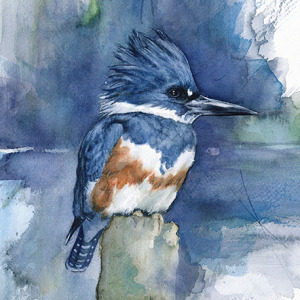 When I'm Not Working As A Biologist, I Paint Watercolor Birds