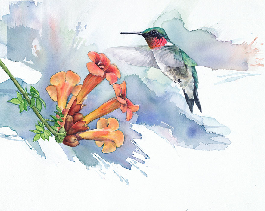 when i m not working as a biologist i paint watercolor birds