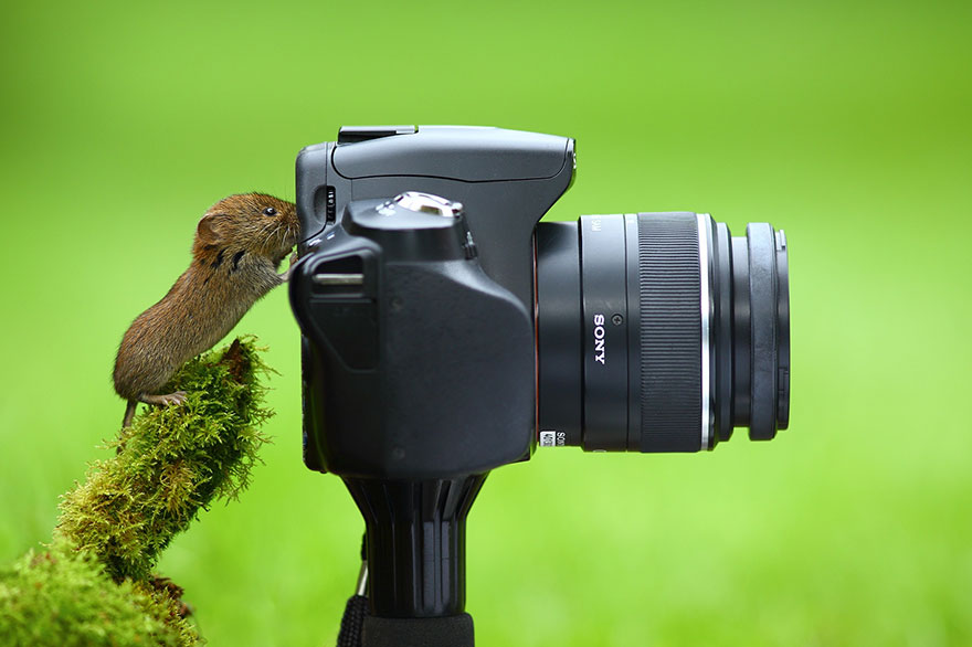 Mouse With Camera