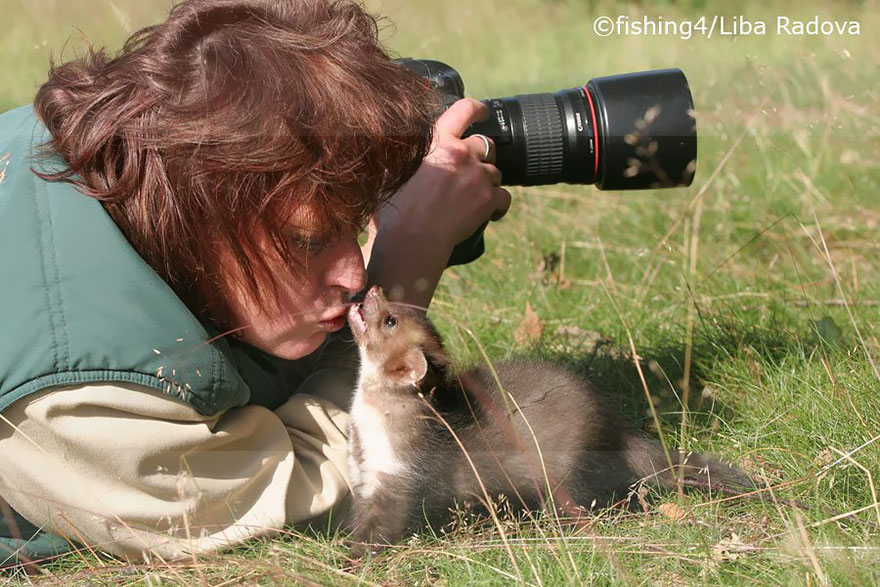 Ferret With Camera