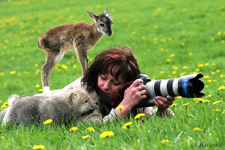 Animals With Camera