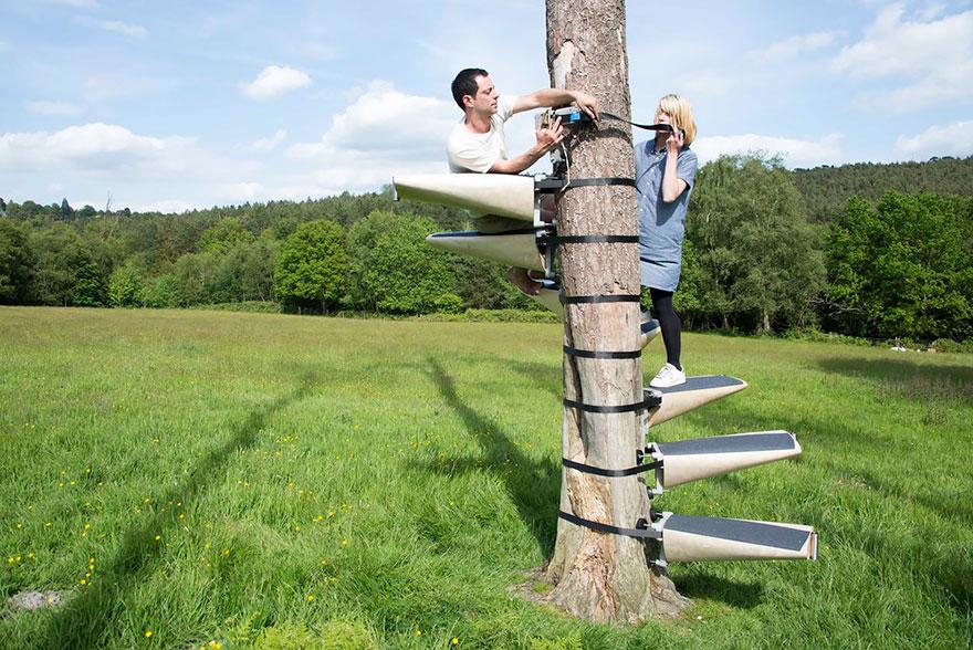 canopy-tree-stairs-thor-ter-kulve-robert-mcintyre-canopystair-10