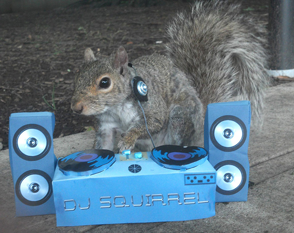 costume-squirrel-whisperer-sneezy-nary-krupa-31