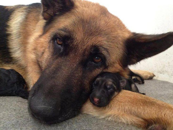 Mother With Her Baby