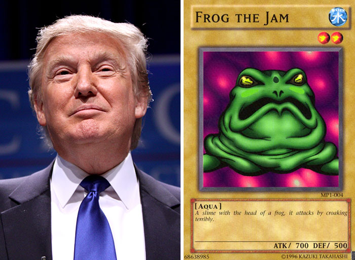 Donald Trump Looks Like Frog The Jam