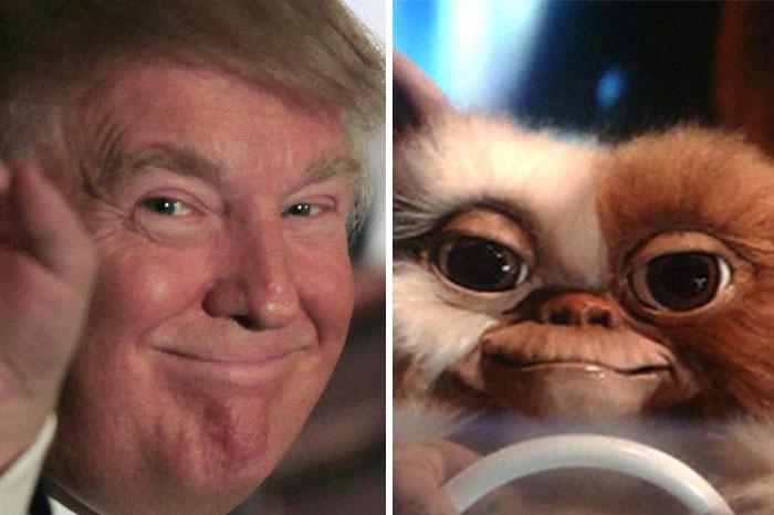 Trump Looks Like Gizmo