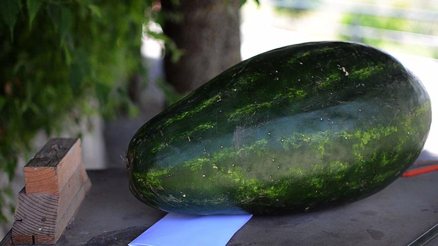 dragon-carving-watermelon-food-art-valeriano-fatica-1