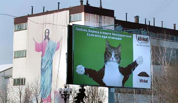 Kitekat Cat Jesus