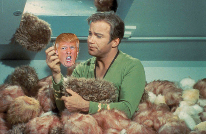 Kirk And The Trumples