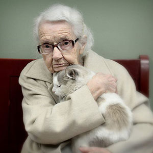 20+ Of The Oldest Cats Adopted By People With The Biggest Hearts
