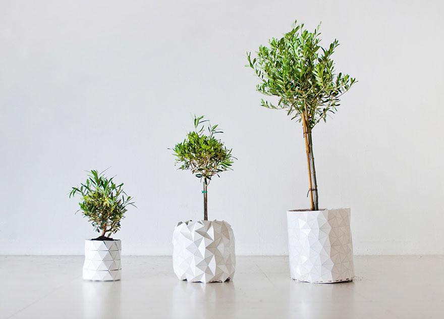 origami-pot-plant-grows-studio-ayaskan-4