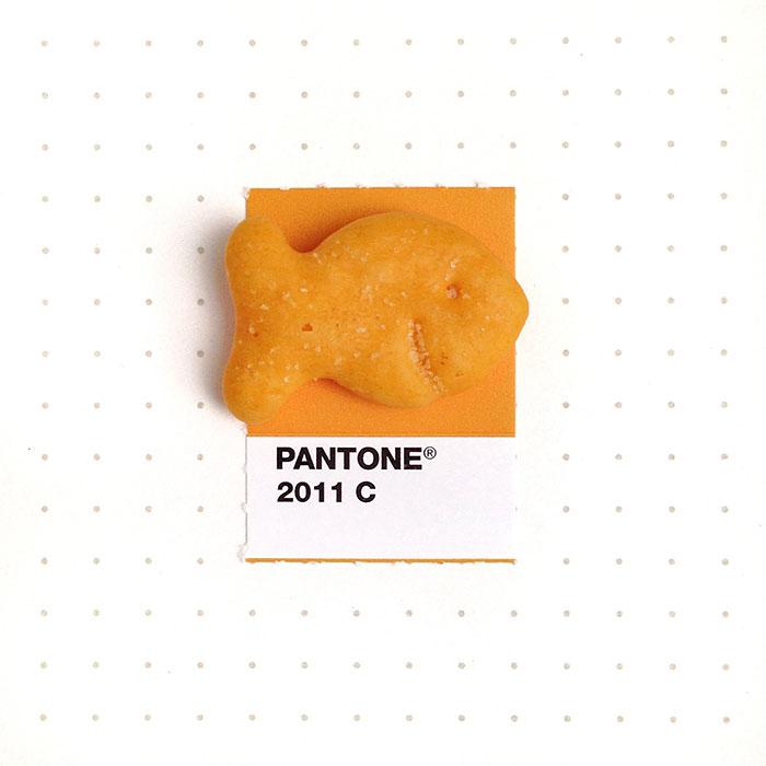 pantone-matching-system-everyday-objects-tiny-pms-project-inka-mathews-houston-texas-5
