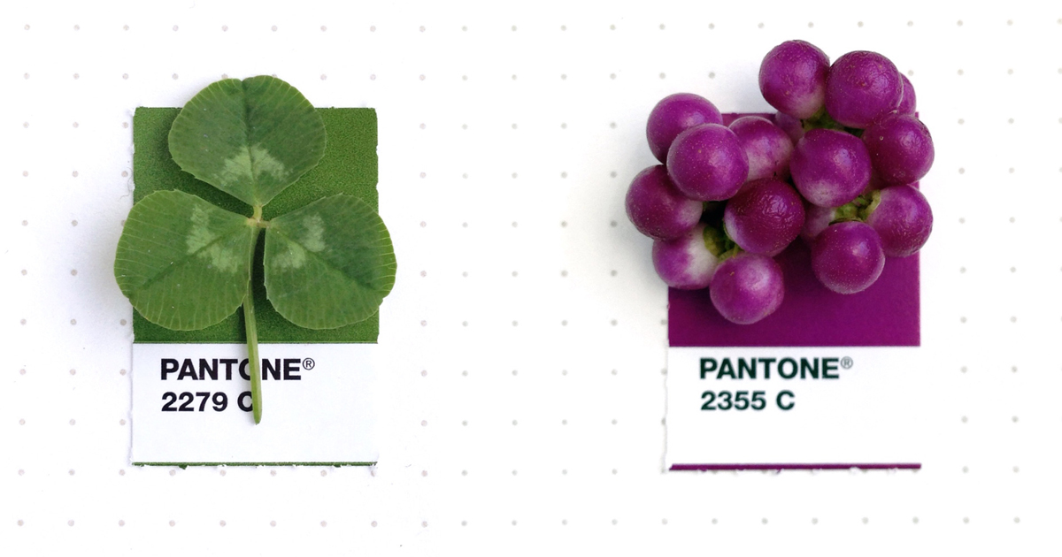 Designer Pairs Pantone Swatches With Tiny Everyday Objects