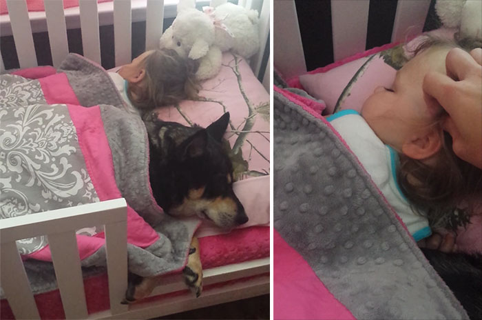 Mom Goes To Check On Her Baby And Finds Rescued Dog Napping With Her