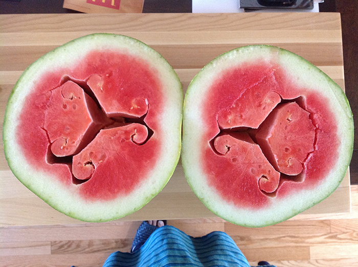weird-watermelons-beautiful-hollow-heart-1