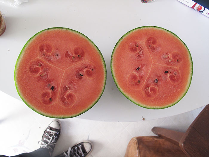 weird-watermelons-beautiful-hollow-heart-11