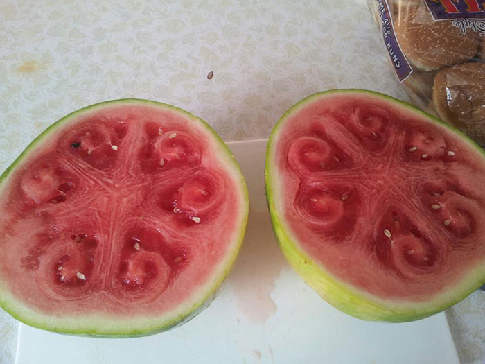 weird-watermelons-beautiful-hollow-heart-6