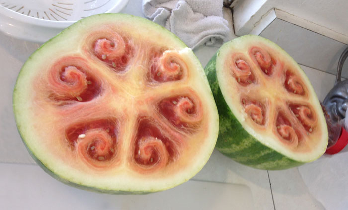 These Beautiful Watermelon Patterns Are Driving Everyone Crazy