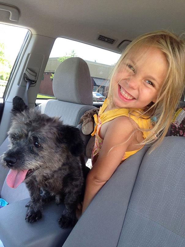 woman-adopts-abandoned-dying-dog-chester-nicole-elliott-3