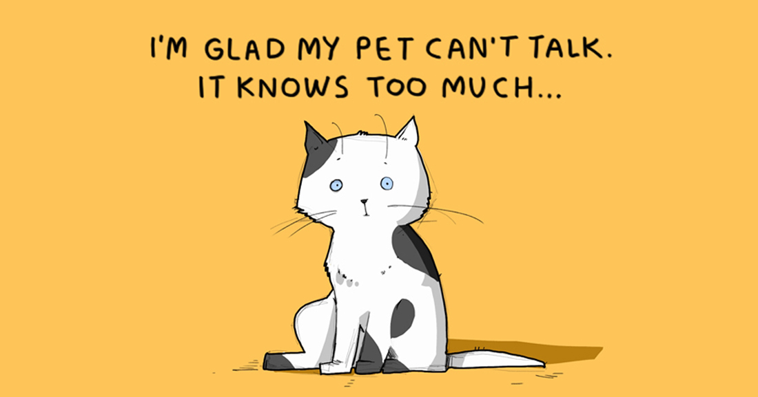 15 Illustrated Truths About Cats