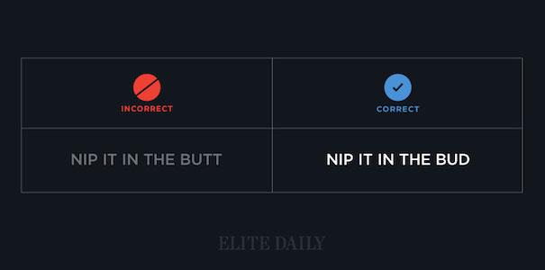 Nip It In The Bud