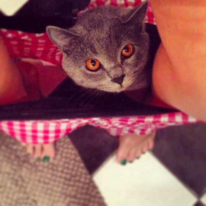 Hellooooo..... I See You.....