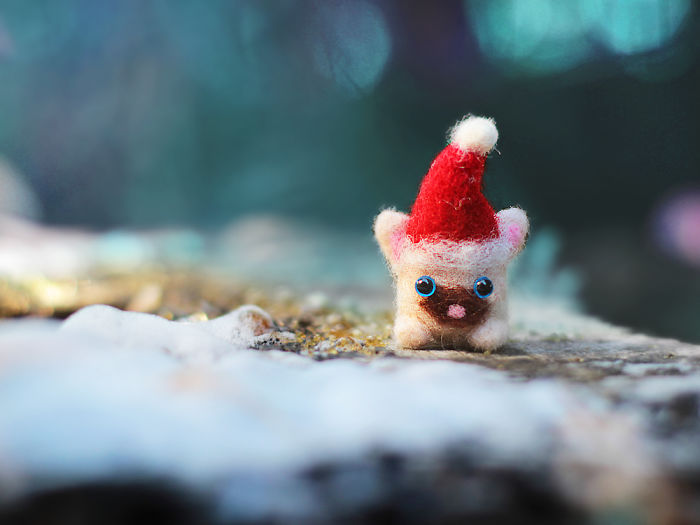 It's Never Too Early To Think About Christmas, So I Made Tiny Woolen Kittens