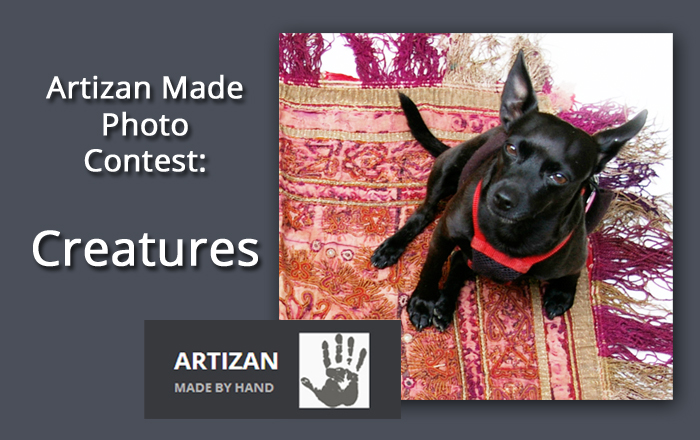 Artizan Made August Photo Contest: Creatures