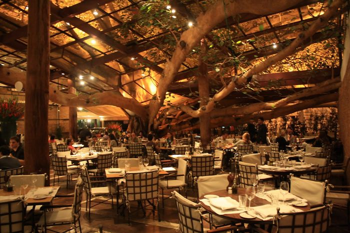 Fig Tree @ Brazilian Steakhouse