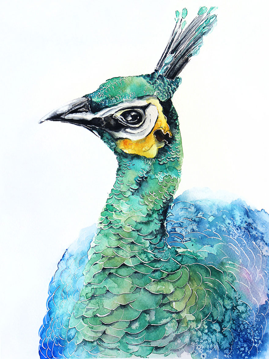 I'm An Architect And I Escape Urban World By Watercoloring Birds
