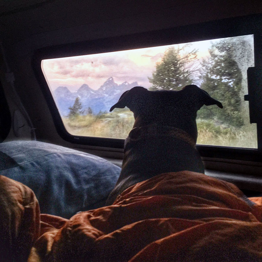 I-Live-in-My-Truck-with-My-Dog-and-Travel-Across-the-Country-1