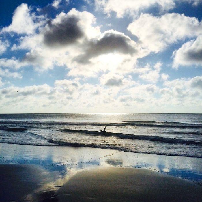 Heavenly Seas