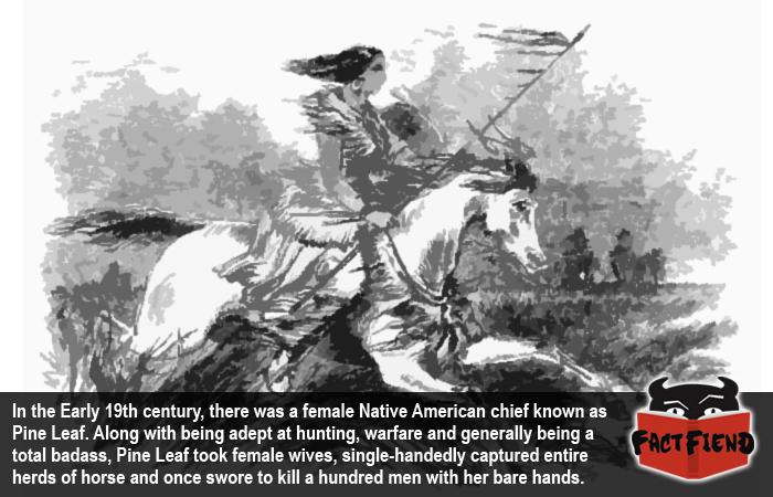 Woman Chief (pine Leaf)