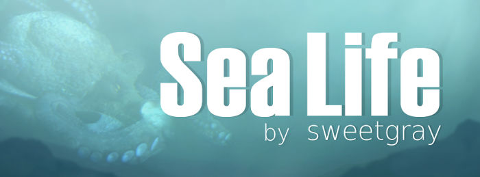 We Paint Friendly Sea Animals