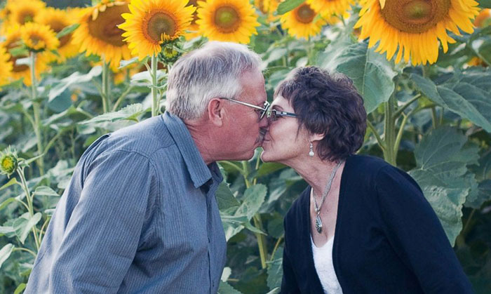 Man Plants 400 Acres Of Sunflowers To Honour Wife Lost To Cancer. Sells Seeds To Fund Cancer Research
