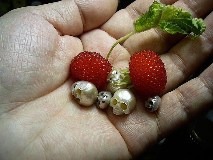 fairy skulls with berries