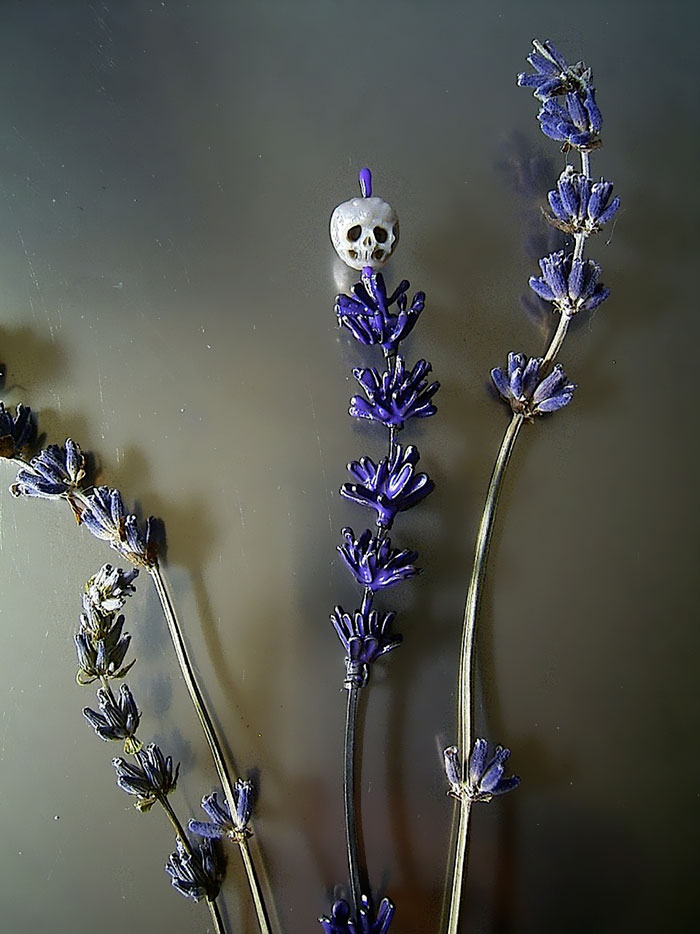 fairy skull on a flower