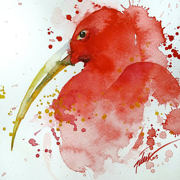 colorful-animal-watercolor-paintings-tilen-ti-1