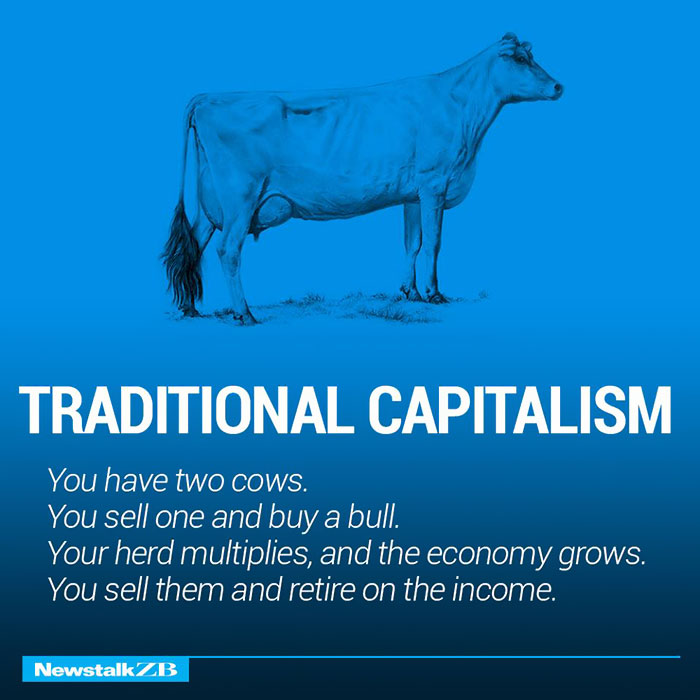 corperation economies explained cows ecownomics 1