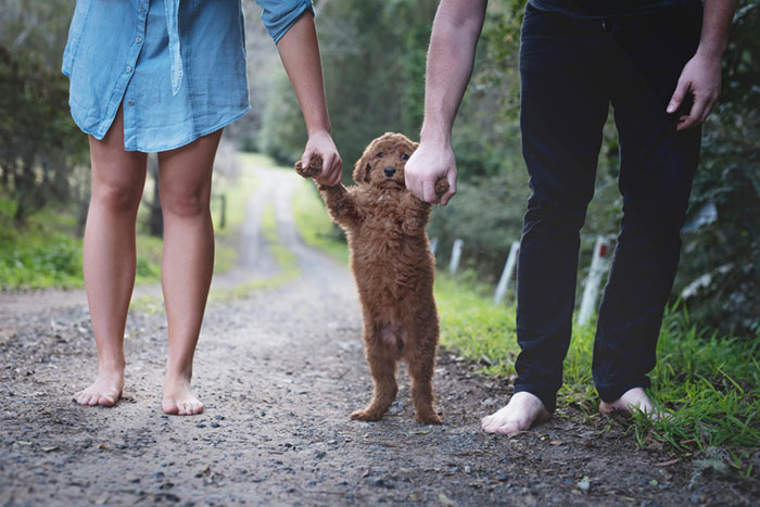 Tired Of Being Asked About Babies, This Couple Did A Newborn Photoshoot With Their Dog