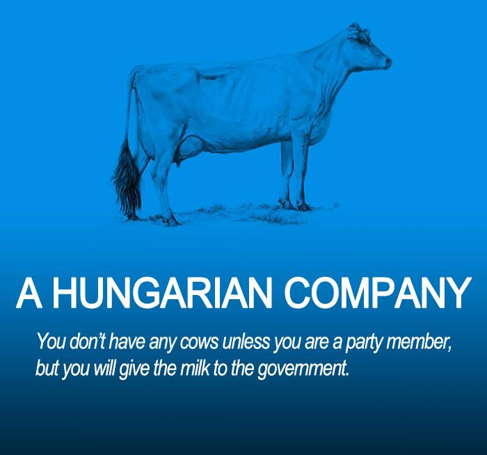 A Hungarian Company